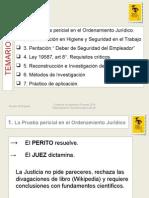 (PPT) PERICIA DE INGENIERÍA Y EL DEBER DE SEGURIDAD DEL EMPLEADOR EN LOS JUICIOS LABORALES..ppt