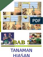 bab5-tanaman hiasan