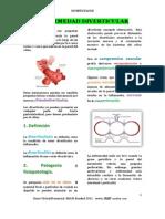 Diverticulosis - Plus Medica