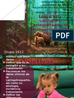 Epiglotitis, Laringitis, Laringotraqueitis, Laringotraqueobronquitis