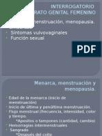 INTERROGATORIO Y ANTECEDENTES GINECO