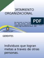 304685Comportamiento organizacional1