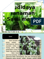 Powerpoint Budidaya Sawi Manis