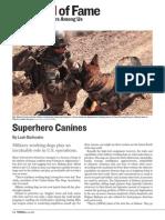 Superhero Canines