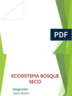 Bosques tropicales secos.ppt