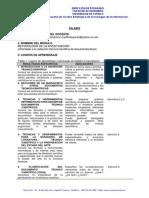 Silabo Met Investig 0614