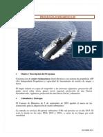 DGM Submarino S-80