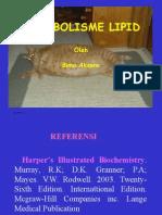 Metabolisme Lipid
