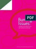 Denyer, Howard, McEvoy & O HUltachain (2009) Burning Issues