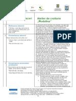 Plan Afaceri Croitorie .PDF
