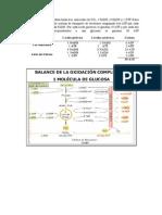 bioquimica general (balance bioenergetico)