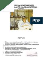 46556830-PERFUZIA-prezentare.pdf