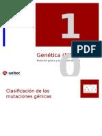 Tema 10 Secuencia y alteraciones ADN