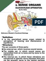 Ear 1436.pdf