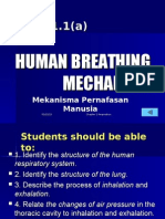 1.1 Human Breathing Mechanism (a)