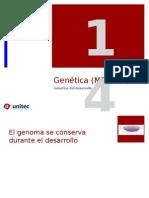 Tema 14 Predicciones Geneticas