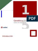 Tema 15 Genetica y Genofarmacologia