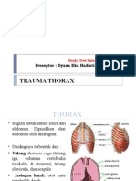 Css 4 Traumathorax (Kiki)