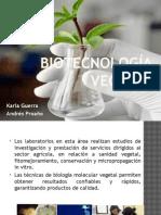 microorgnismos benéficos para cultivos