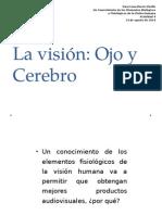 La Visión Ojo y Cerebro
