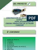 Presentación Proyecto Palma Camedor