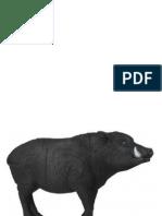 Target 16 - Wild Boar Paper Target (A3)