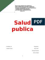 Trabajo Salud Publica