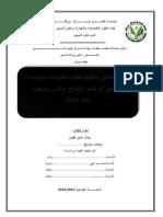 تدقيق انظمة المعلومات.pdf