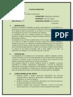 PLAN DE ASIGNATURA DE MATEMÁTICAS 6° (1)