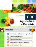 Agricultura e Pecuária