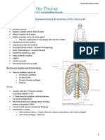 ABS-Anatomy of the Thorax