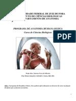 Materia ESQUELETO 04.02.2014.pdf
