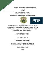 Proyecto Ccencho Final Corregido OKBZAS
