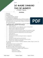 Reglas Kmc Espanol