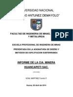 Informe  Huancapeti