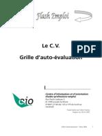 CV Auto Evaluation