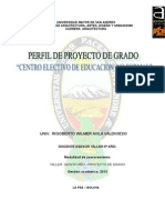 Perfil de Grado (CENTRO ELECTIVO DE EDUCACION  NO FORMAL)