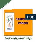 plantas_toxicas