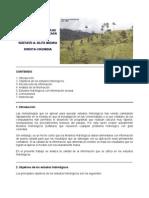 HIDROLOGIA EN CUENCAS CON INFORMACION ESCASA.pdf