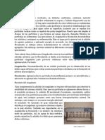 Introducción-fisico.pdf