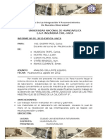 Limite Liquido Huarcaya Impresion 2012