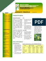 Squash Commodity Profile