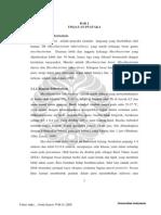 125833-S-5761-Faktor risiko-Literatur.pdf