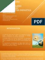 NUEVAS-ENERGÍAS-RENOVABLES
