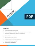 CEREBELLUM.pdf