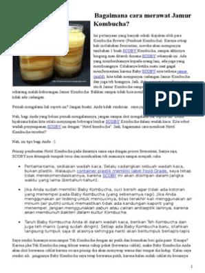 Jamur Dipo Untuk Pencegahan Dan Kesehatan Keluarga