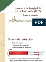 Unidad_2_RFLP_-_aclople