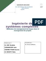 Méthodes de Management Du Risque Dans Le Management de Projets