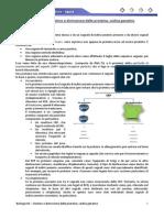 Biologia 40 - Destino e Distruzione Proteine