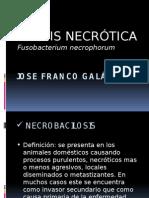 RINITIS NECRÓTICA